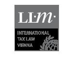 International tax law vienna - Miñana Beltran